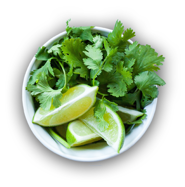 Bowl of Cilantro and lime wedges